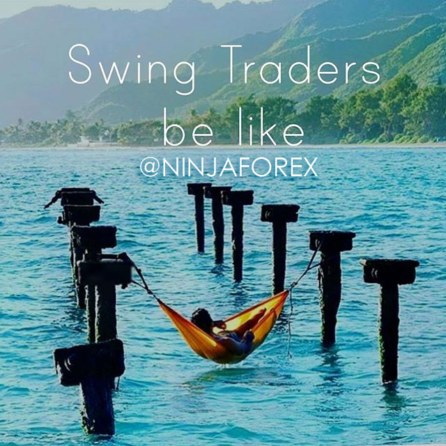 swing trader professional
